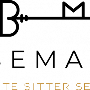 Babe Maven Sitter Service